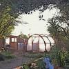 Michael Ray's Nurse-Tree Arch